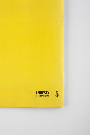 amnestybil7bx