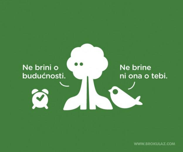brokula&z_16hr